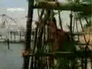 saathiya nahi jana video song from the movie Aaya Saawan Jhoom Ke
