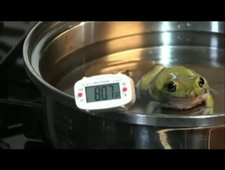 Frog Adjusts To Boiling Water (MUST SEE!!)