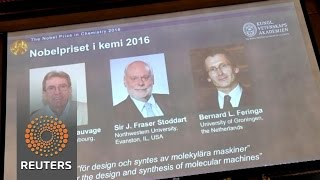 """Trio wins Nobel chemistry prize for """"world's smallest machines"""""""