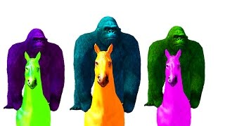 Colour Gorilla and Hourse Kids Rhymes - Gorilla Riding Horse Funny Rhymnes For Kids - TSP Kids Rhymes