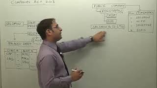 Nature of Company | CS Executive Company Law by Prof. Sudhir Sachdeva