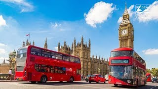 London buses to be powered by coffee grounds