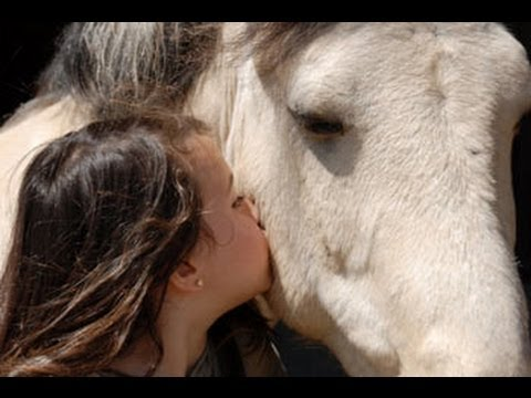 Competetion Between Two Girls - Girl kiss horse - A girl and horse - funny video