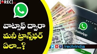Now We Can Transfer Money Using Whats-App | Latest Whats-app Updates | RECTVINDIA