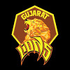 The Gujarat Lions's image