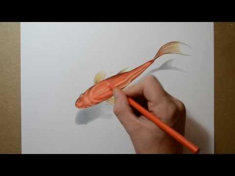 DRAW drawing tutorial How To draw pencil drawing 3D drawing lessons painting a goldfish