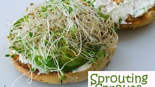 Sprout Moong Dal Ka Salad Recipe(stream sprout recipe)
