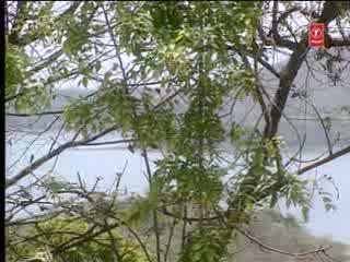 Kar Gaya Kanha Mian Ka Waada Bhajan Video Song - Shyam Teri Bansi(Krishan Bhajan)