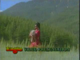 Mil Gaye Mil Gaye Aaj Mere Sanam video song from the movie kanyadaan
