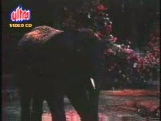 Bahaaron Phool Barsaao video song from the movie suraj