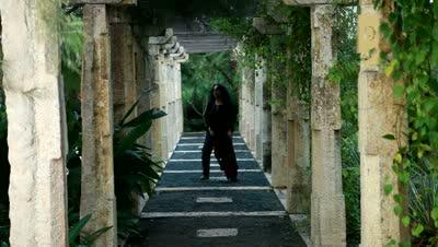 The Dewarists - Susheela Raman