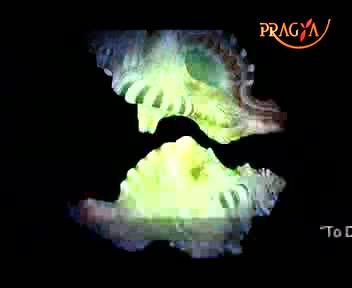 Pragya Prabhat-Action Plan/Aerobics/Aura Therapy