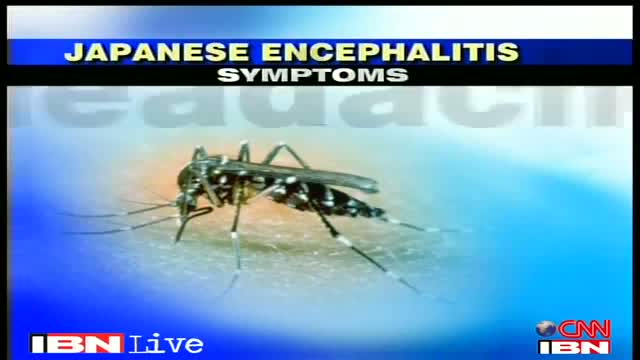 Delhi, 14 cases of Japanese Encephalitis reported