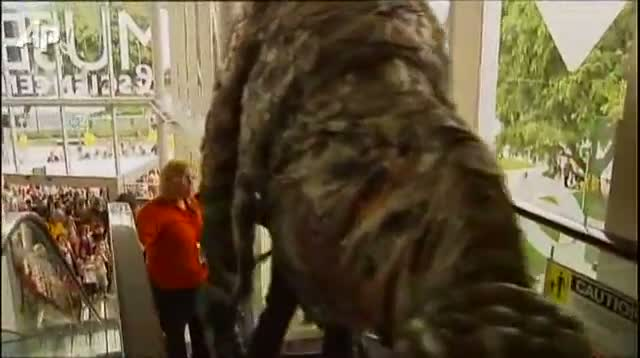 Animatronic Dinosaurs Take Over Aussie Museum