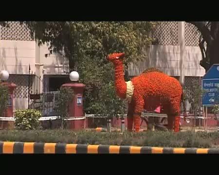 Delhi turns more beautiful for BRICS