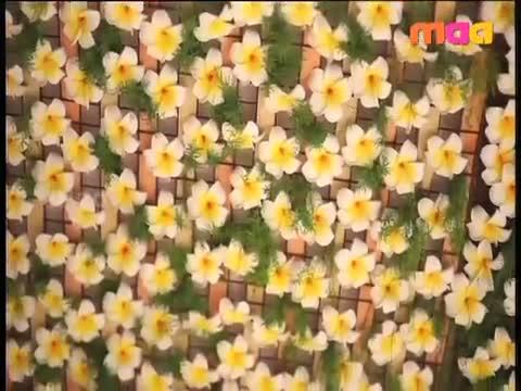 Watch రామ్ చరణ్ జాలీ రైడ Video Id 32199d977c31 Veblr