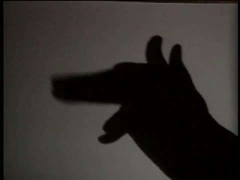 Rao - Hand Shadows - Funny Video