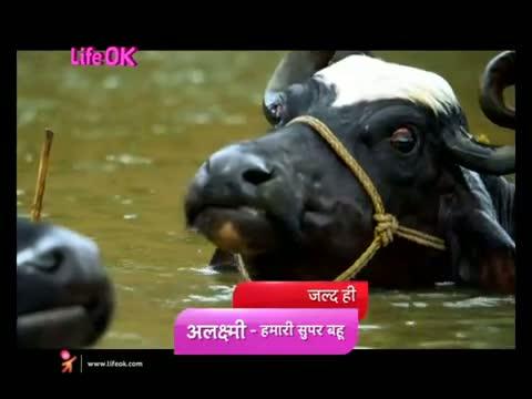 'Alaxmi... Hamari Super Bahu' - Naughty and nice