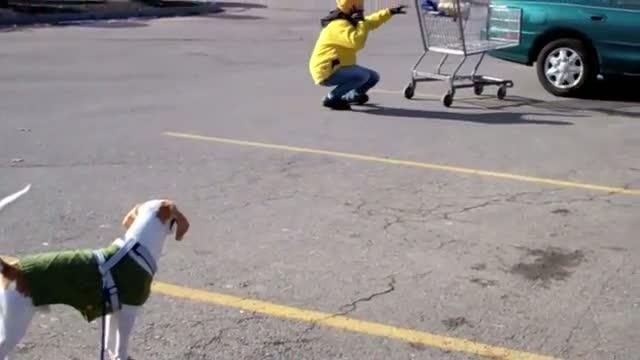 Tumble at the Supermarket