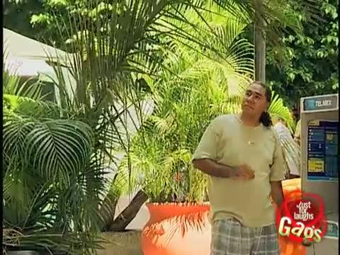 Annoying Palm Tree Gag - Funny Video