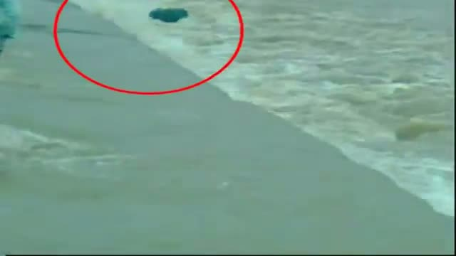 Live death Daredevil act drowns two to death