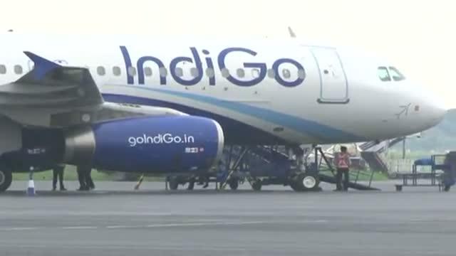 Indigo flight grounded in Patna after bird hit