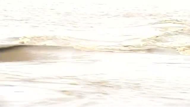 Flood alert Yamuna touching the danger mark