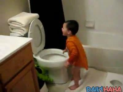 Toilet Swimmer