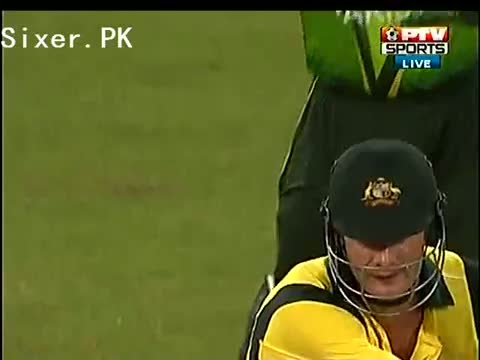 Ajmal Lovely Expression for Shane Watson