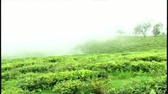 Sikkim tourism back on track