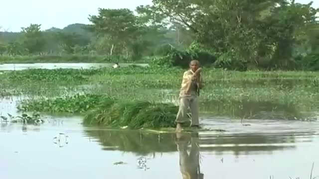 Over 13 8 lakh people affected in Assam flood