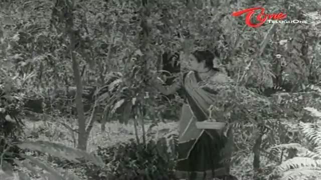 Krishna Prema Songs - Navvula Puvvula - Shanta Kumari - G V Rao - Telugu Cinema Movies