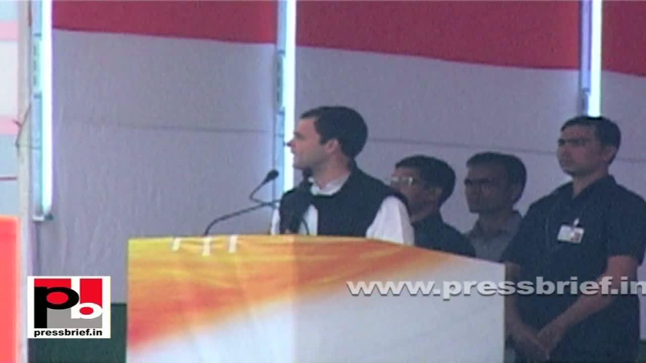 Rahul Gandhi in Delhi appreciates Congress-led Sheila Dixit government