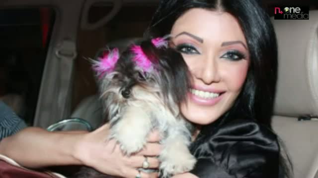 Bollywood stars with their Pets Unseen Collection