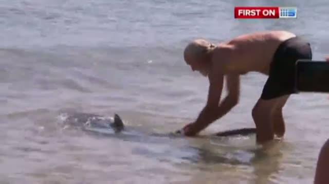 Man Wrestles Shark Away From Beach