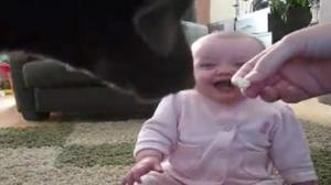 Dog Eating Popcorn Cracks Baby Up