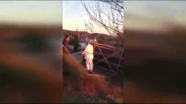 Hot Air Balloon Wedding Crashes