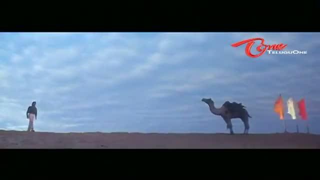 Viswam Movie Songs - Radha Radha Anuradha Song - Surya, Preeti - Telugu Cinema Movies