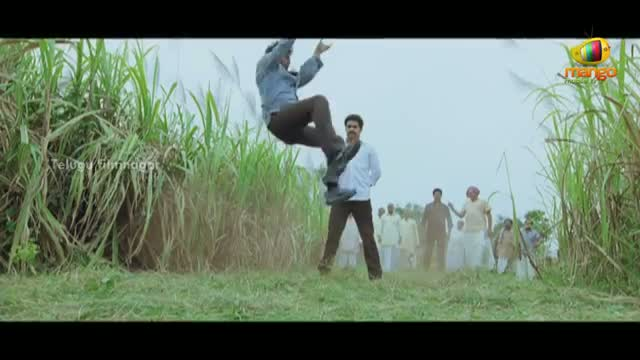 Unbelievable Telugu Movie Hero Stunts - Indian Cinema Stunts - Telugu Cinema Movies