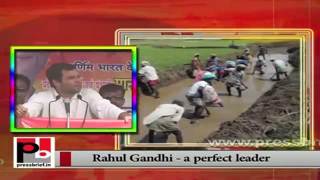 Rahul Gandhi: A true ambassador of Congress-led UPA Govt.