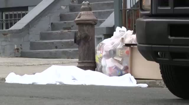 Body Parts Found in NY Neighborhood