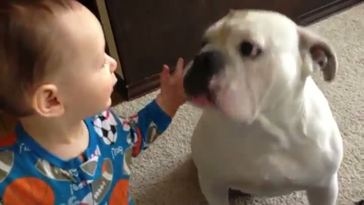 Young Kid Just Wants To Share His Food