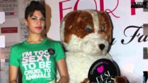 Jacqueline Fernandez Promotes PETA New Campaign