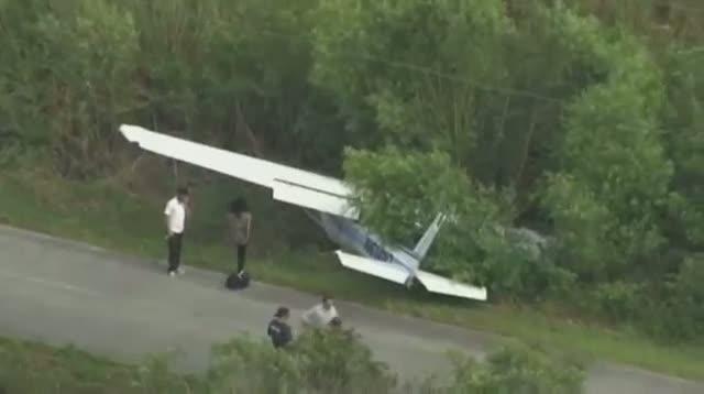 Small Plane Crashes Onto Fla. Road