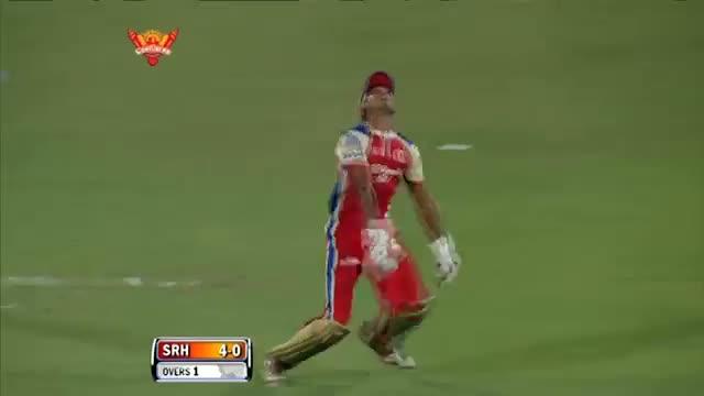 Wickets - SH vs RCB - PEPSI IPL 6 - Match 7