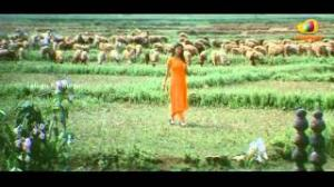 Naa Route Veru Movie Songs - Yevarive Sarigama Song - Namitha, Sathyaraj, Siva Balaji, Madhumitha - Telugu Cinema Movies