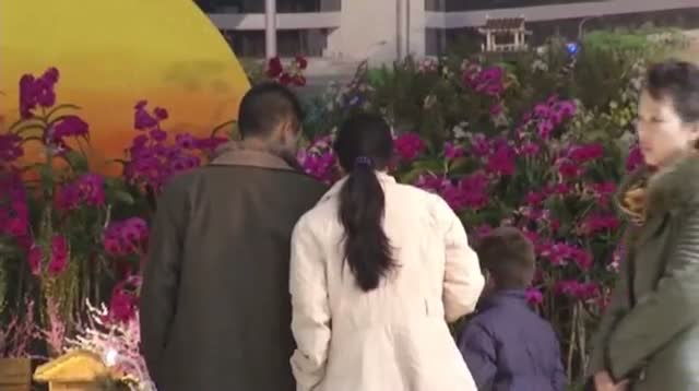 Missiles Featured at NKorea Flower Festival