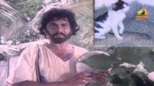 Chattaniki Kallu Levu Movie Songs - Chattaniki Kallu Levu Song - Chiranjeevi, Madhavi, Lakshmi - Telugu Cinema Movies