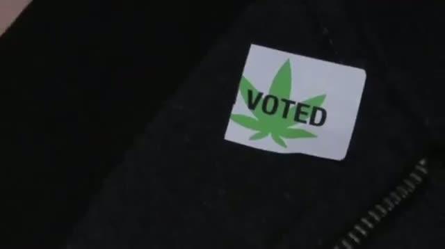 The Politics of Pot: Marijuana Goes Mainstream