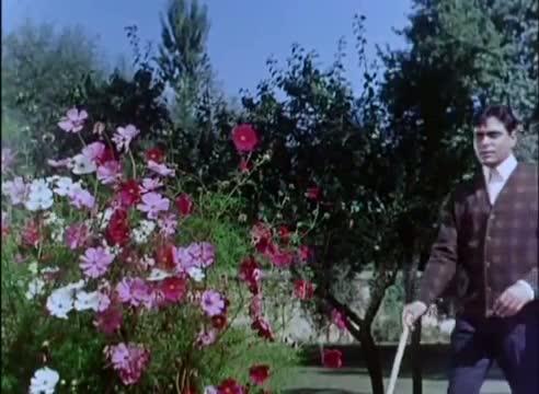 Mera Pyar Bhi Tu Hai (Sad) - Rajendra Kumar, Vyjayanthimala - Saathi (1968)